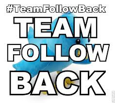Team Follow Back